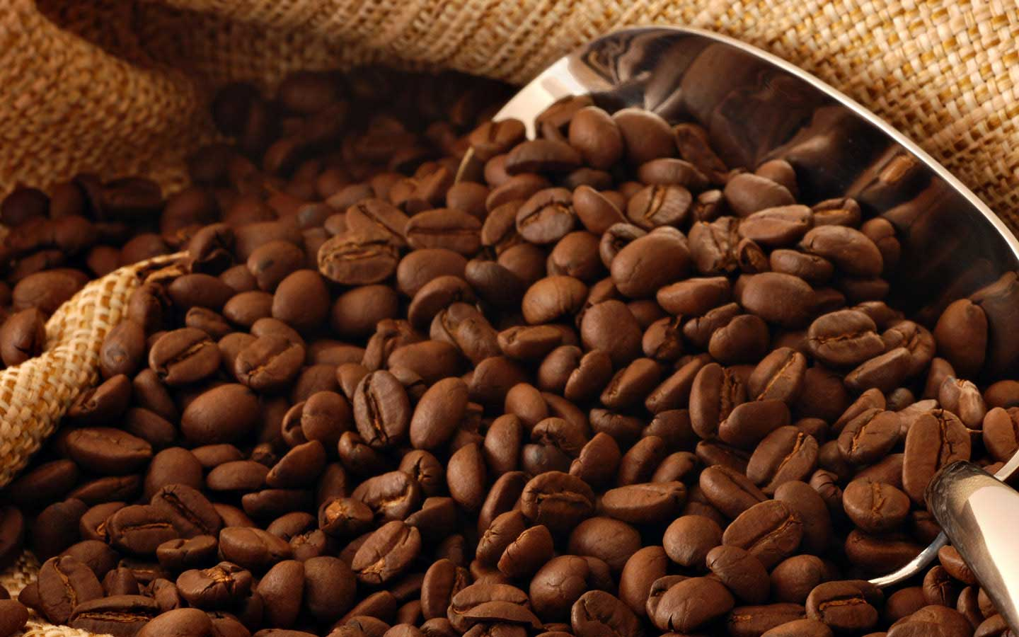 Freshly roasted Origin Coffee beans